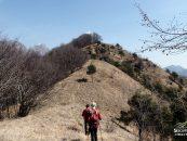 Monte Lupo